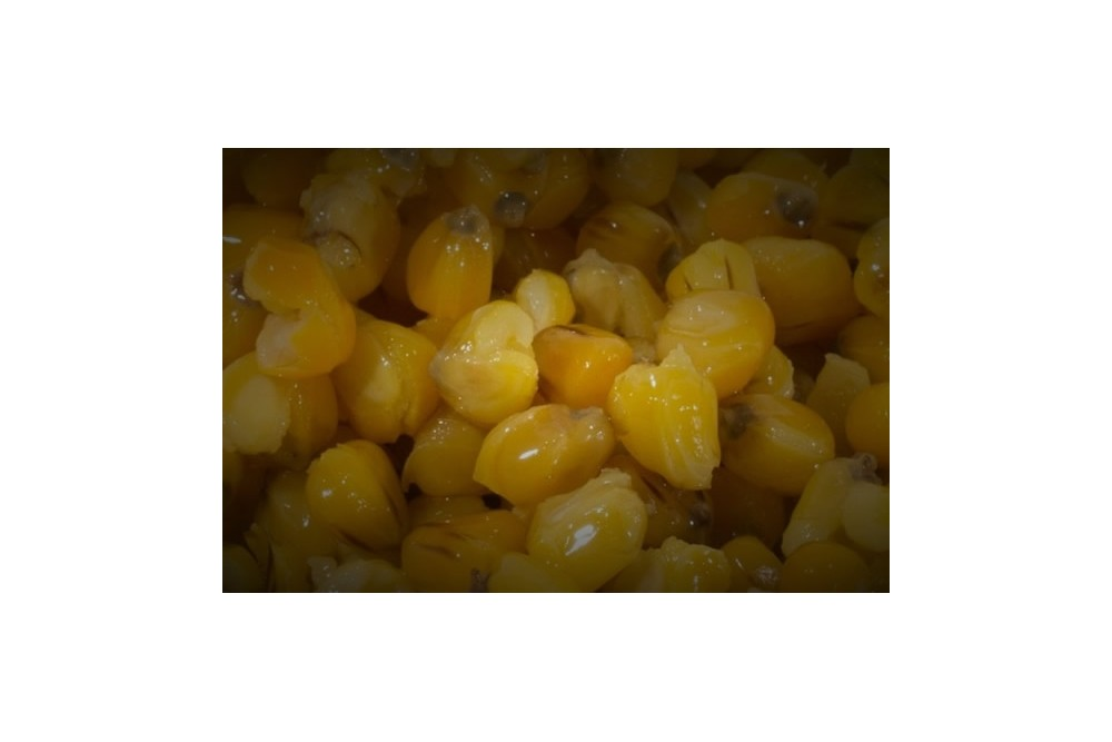 Cooked Maize
