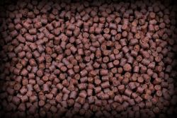 Red Halibut Feed Pellets 6mm